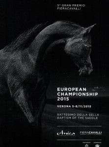 The 2015 European Championships in Verona