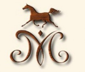 Winter Arabian Horse Sale 2016